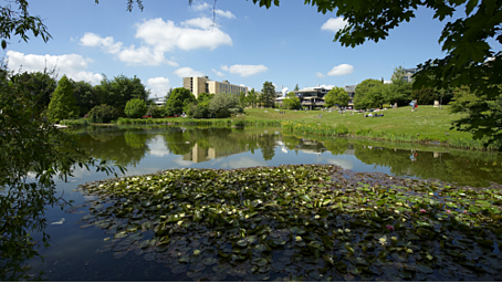 Digital assessment at The University of Bath