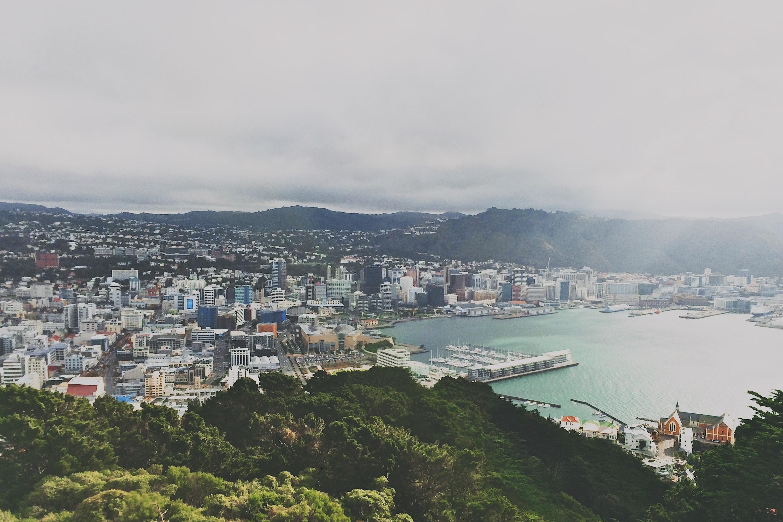 Wellington_blog