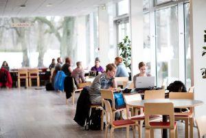 gothenburg uni inspera assessment cafeteria-1
